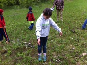 spreading prairie seed