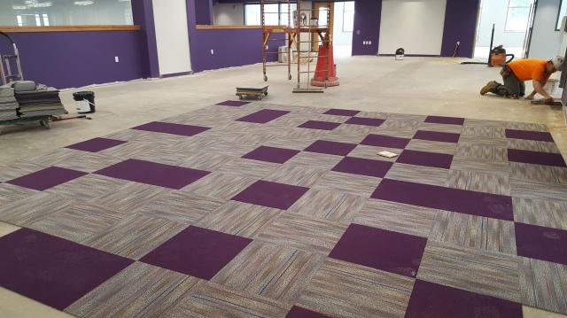 carpeting-2-6-17
