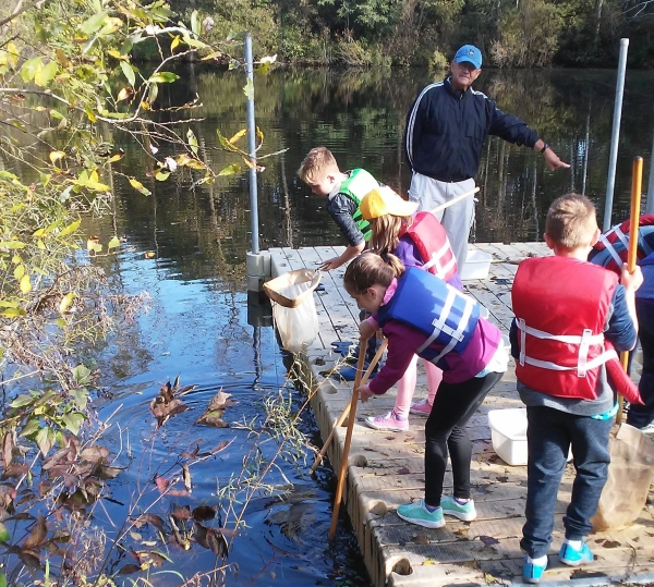 Students searching for specimens in pond