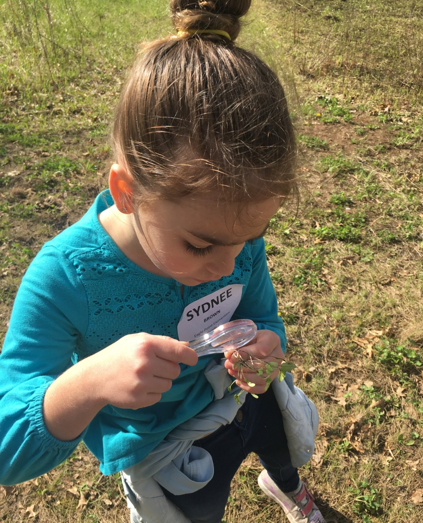 Student looking at plant through magnifiying glass